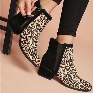 Splendid Rosalie II Black Leopard Ankle Booties